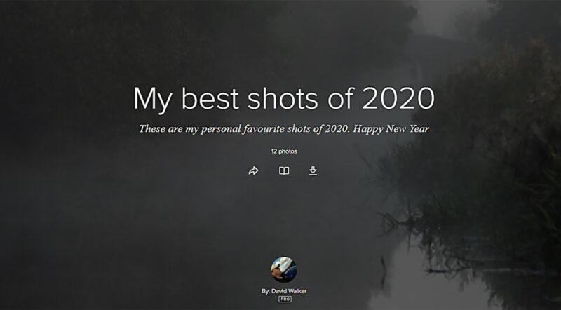 My 12 best photos of 2020